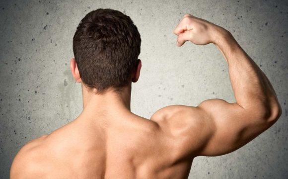 hcg muscle mass
